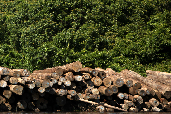 Shpyllëzimi është ndër problemet kryesore mjedisore në Kosovë | Foto: WIkimedia