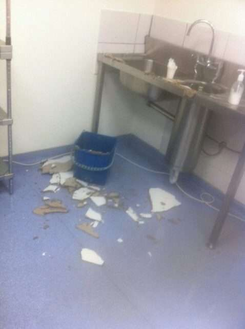 spitali4