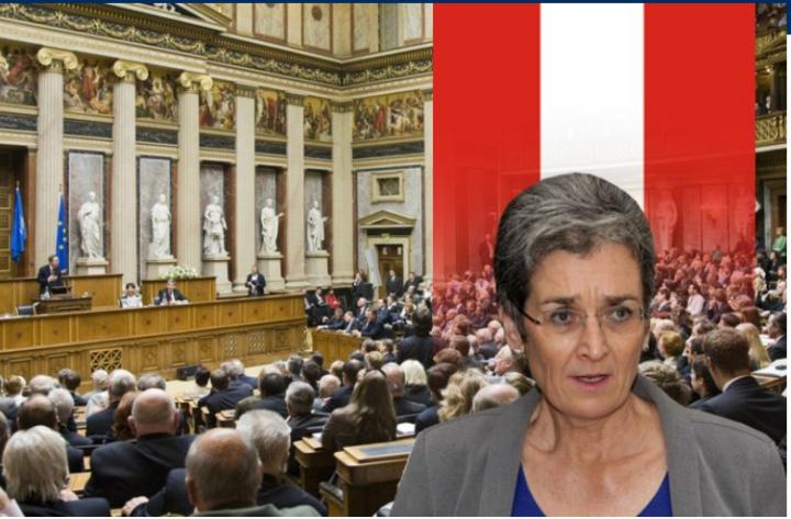Dështimi në Zgjedhje  Ulrike Lunaçek Jep Dorëheqje